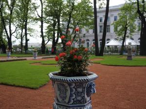 Летний сад. Большой партер. Цветочная ваза.