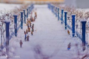 """Исторический музей-макет """"Петровская Акватория"""""""
